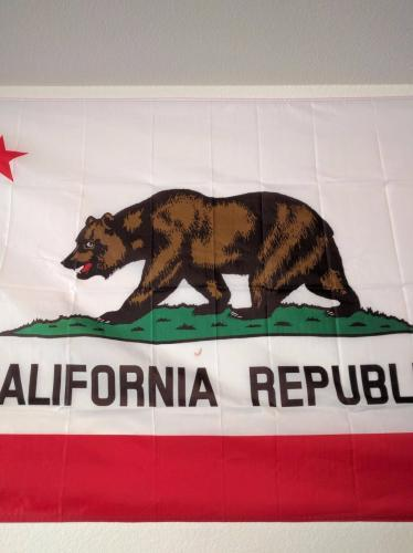 Fly Breeze California State Flag photo review