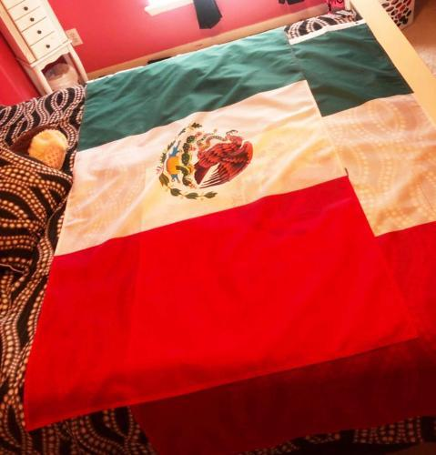Fly Breeze Mexico Flag 3x5 Foot photo review
