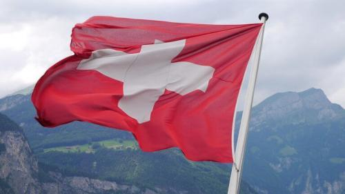 Fly Breeze Switzerland Flag 3x5 Foot photo review